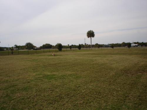 Doggie Park